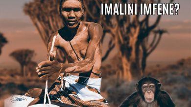 """Dumakahle Drops """"Imalini Imfene"""" EP"""