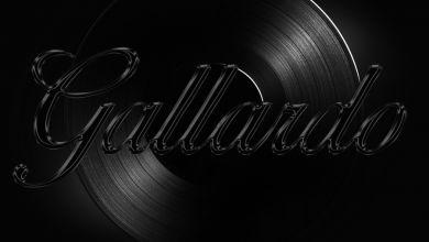 Tshegokoke - Gallardo - Single
