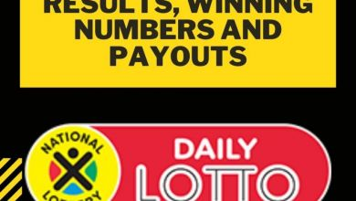 Daily Lotto Results, Winning Numbers And Payouts Today