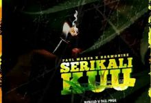 "Paul Maker Enlists Harmonize For ""Serikali Kuu"" Image"