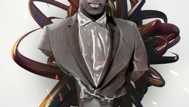 Dj Mzu - Aniyeke Ukuloya - Single (feat. Lady Du & DJ Bongz) - Single