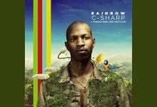 """C-Sharp, Mthokozisi Ndaba, Family First, DJ Sox release """"Rainbow"""""""