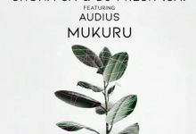 "Shona SA & DJ Fresh SA release ""Mukuru (Original Mix)"" featuring Audius"