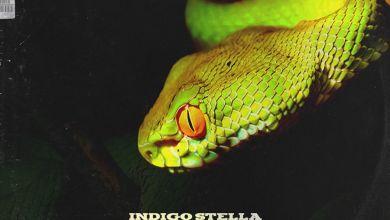 Indigo Stella - No Cap (feat. Bryan Cheru) - Single