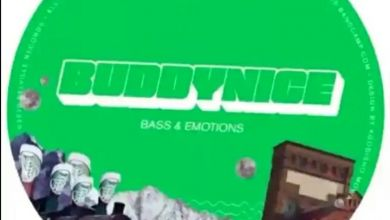 """Buddynice releases """"Bass & Emotions EP"""""""