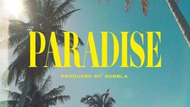 DJ Kaygo Drops Paradise Ft. DreamTeam, Quickfass Cass & 2lee Stark