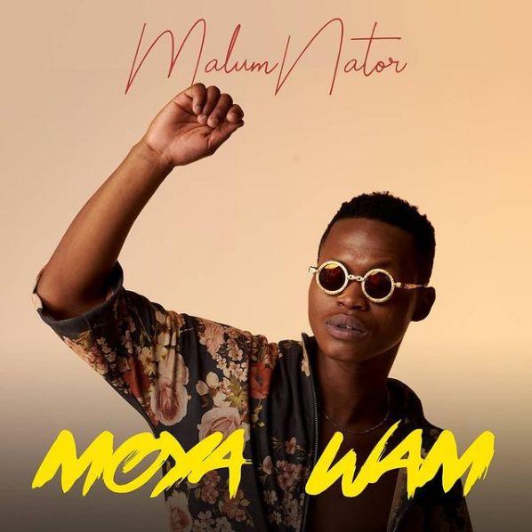 MalumNator Drops Aw'Yebo Ft. De Mthuda, Ntokzin & MFR Souls