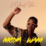 MalumNator – Iy'phuzo (feat. De Mthuda & Ntokzin)