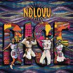 "Ndlovu Youth Choir ""Rise"" In New Album"