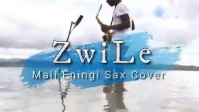Big Zulu – Imali Eningi (Zwile Sax Cover) Ft. Intaba Yase Dubai & Riky Rick