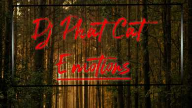Dj Phat Cat - Emotions - Single