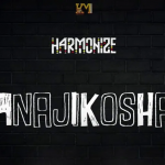 Harmonize Premieres Anajikosha