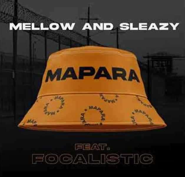 Mellow & Sleazy Drop Mapara Ft. Focalistic