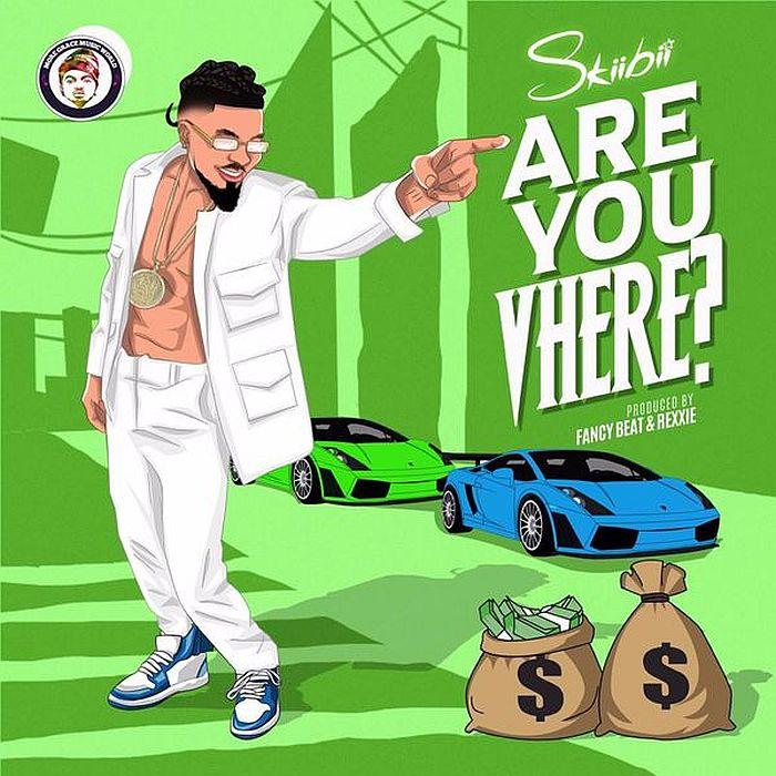 """Skiibii Asks Are You """"Vhere"""" In New Song   Listen"""