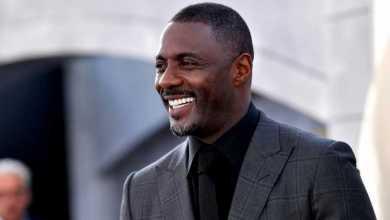 Idris Elba Has Song With Megan Thee Stallion & Davido