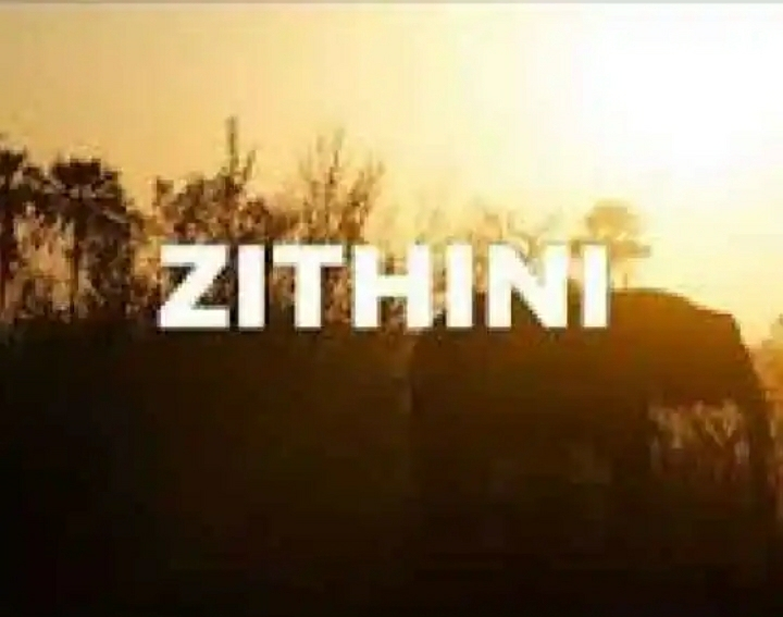 Mr Jazziq, Lady Du, Zuma & Busta 929 – Zithini