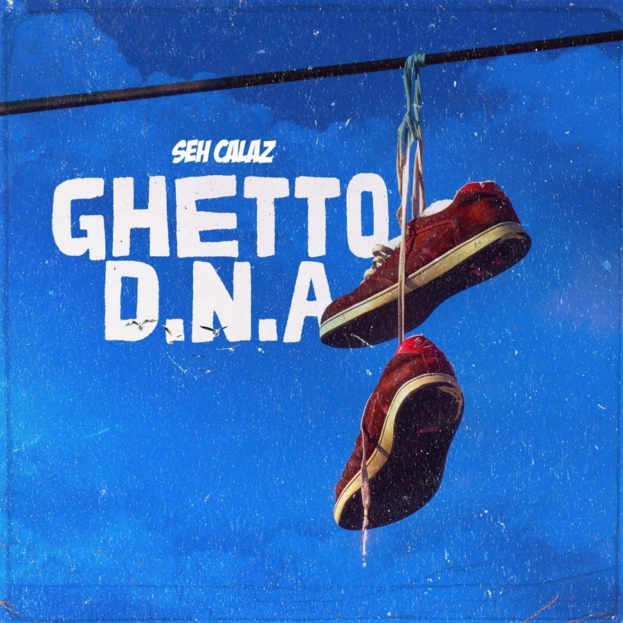 Seh Calaz – Ghetto D.N.A Album