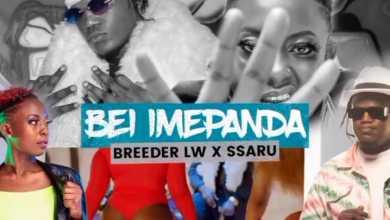 Breeder LW – Bei Imepanda Ft. Ssaru