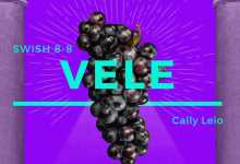 """Swish 8-8 Releases New Song """"VELE"""" Featuring Cally Leio"""