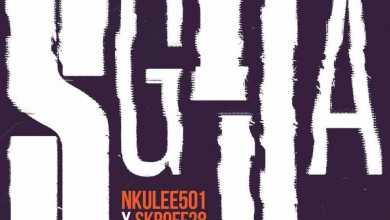 Nkulee501 & Skroef28 – Sgija ft. Young Stunna