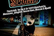 ThackzinDJ, Tee Jay, Sir Trill - Sdakwa Ft. Dlala Thukzin, Nkosazana Daughter, Rascoe Kaos & Mpura