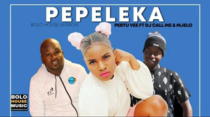 Pertu Vee – Pepeleka Ft. Dj Call Me & Mjelo