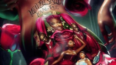 Megan Thee Stallion Announces A New Joint 'Don't Stop' With Young Thug
