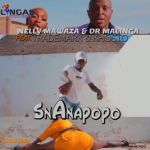 "Nelly Mawaza & Dr Malinga enlist Trademark & Khosto for ""Snanapopo"""