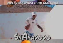 "Photo of Nelly Mawaza & Dr Malinga enlist Trademark & Khosto for ""Snanapopo"""